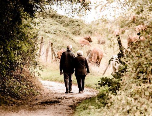 Tipps für dein Date im Alter Der Weg zum Erfolg